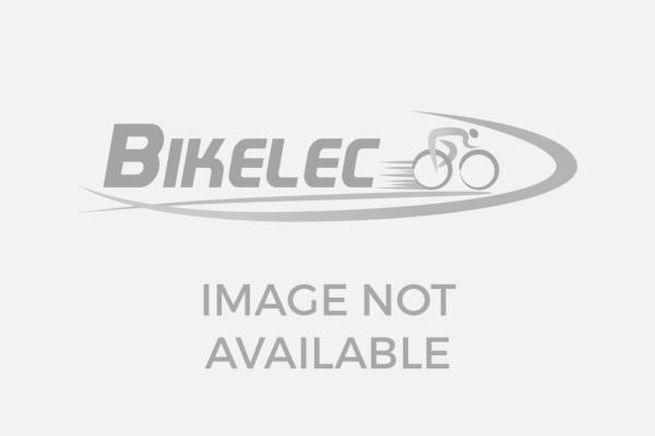 Pandora Cargo Bike